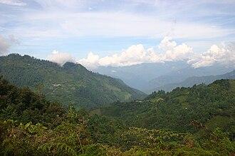 Sierra Madre de Oaxaca - Image: Yagila