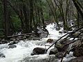 YosemiteNP BridalveilFallAfterFall.JPG
