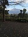 Yoshinocho, Kagoshima, Kagoshima Prefecture 892-0871, Japan - panoramio (5).jpg