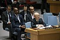 Yukiya Amano briefs Security Council (01890346) (47527122371).jpg