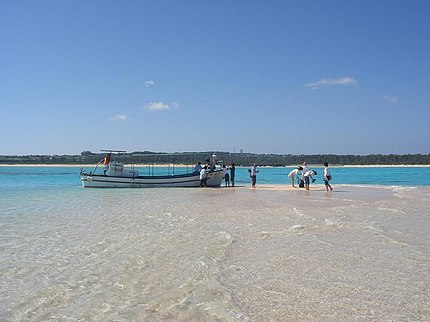 与論島 百合が浜