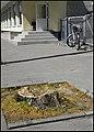 Zagare - panoramio (6).jpg