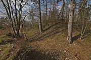 Zaniklý hrad Rysov (04).jpg