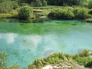 Sava Dolinka - Zelenci Springs, the source of the Sava Dolinka