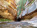 Zion Subway Hike (8014446382).jpg