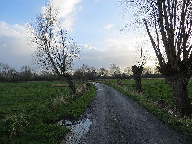 Zulte, Koestraat (Naturschutzgebiet Gaverbeekse Meersen)