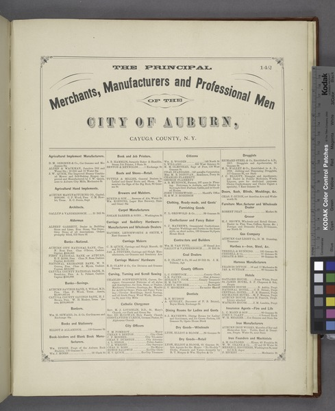 "File:""The Principal Merchants, Manufacturers and Professional Men of Cayuga County, N.Y. (cont.)"" NYPL1583115.tiff"