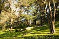 ® S.D. MADRID PARQUE DEL OESTE - ROSALEDA - panoramio (9).jpg