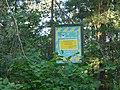 Боромики (заказник), кв. 118–127 Вертіївського лісництва.jpg
