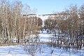 Васильківські Карпати. зима 2017.jpg