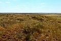 Вид с высоты 236,6 в южном направлении - panoramio.jpg