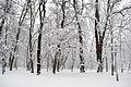 Вінниця - центральний парк 01.JPG