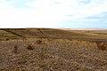 В северо-западном направлении - panoramio (2).jpg