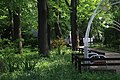 Дендрарій Київського зоопарку (масив дерев) IMG 3427.jpg