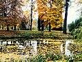 """Дендрологічний парк """"Олександрія"""".jpg"""