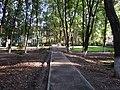 Минеральный парк, объекты парка (аллея), Старая Русса.jpg