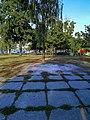 Пам'ятник Крупській Н. К., радянському партійному і державному діячеві (станом на вересень 2019 р.).jpg