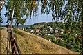 Плёс - panoramio (1).jpg
