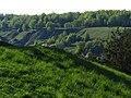 Пологие очертания Кременецких гор к западу от города Кременец.jpg
