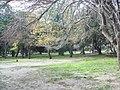 Эгейский Национальный Парк, Турция-05.JPG