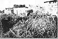 בית איכרים בכפר-תבור-JNF000309.jpeg