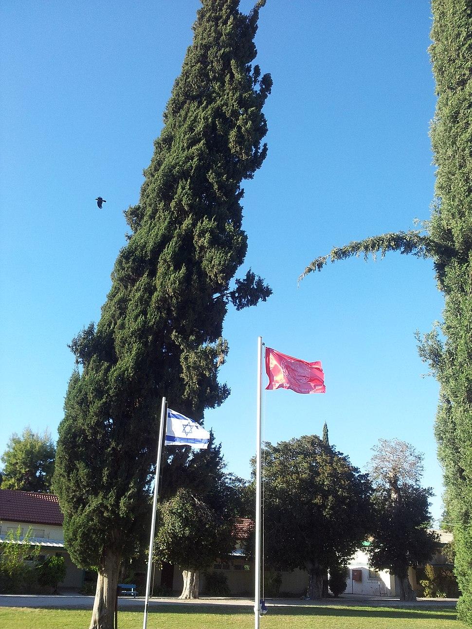 דגל ישראל לצד דגל אדום