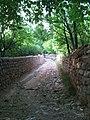 نمایی از کوه باغ های روستا.jpg