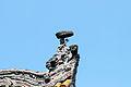 昭觉寺 09.jpg