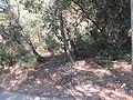 001265 - Albalate de Zorita (4022389048).jpg