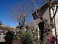 07510 Sineu, Illes Balears, Spain - panoramio (49).jpg