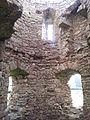 11. Ballyloughan Castle, Co. Carlow.jpg