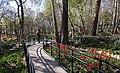 1397010219304060213705204 بوستان باغ ایرانی - ده ونک.jpg