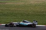 150704 F1 British Grand Prix Day Three-63 (19467989026).jpg