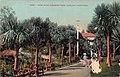 1684.PALM WALK PIEDMONT PARK OAKLAND CALIFORNIA (23660353766).jpg