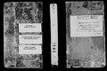 1913 рік. Метрична книга села Воскресенське Херсонського повіту.pdf
