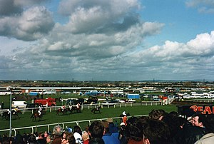 1994 Grand National - Approaching the 17th fence, from right to left: Riverside Boy, The Fellow, Miinnehoma, Garrison Savannah, Ebony Jane, Moorcroft Boy, Rust Never Sleeps, Fiddler's Pike, Into The Red and Just So