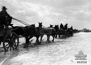 Capture of Jericho - Wagons of the 1st Australian Light Horse going through the flood waters at Esdud to collect their rations on 7 January 1918. Photographer Frank Hurley