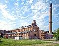 20090513440DR Borna-Witznitz Brikettfabrik Witznitz.jpg