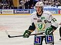 2013-12-30 Magnus Nygren 01.jpg