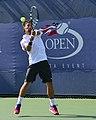 2013 US Open (Tennis) - Fabio Fognini (9664837826).jpg