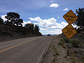 2014-07-30 12 46 17 Signs at the end of pavement on Main Street in Belmont, Nevada.JPG