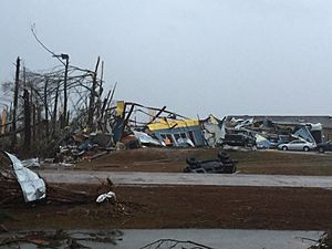 2014–15 North American winter - EF3 damage to a business in Columbia, Mississippi.