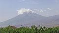 2014 Prowincja Ararat, Widok na Mały Ararat (02).jpg