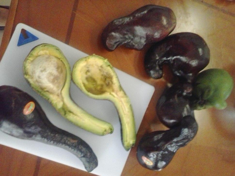 2015-08-08 09.11.34 unusual avocado (the fertility testicle fruit) variety from Cebu Philippines 2