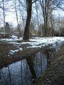 20150219 82 Wienerwaldsee (Large) (16555770216).jpg