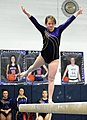 2015 District Championships West Geauga 26.jpg