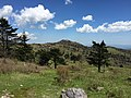 2017-05-16 15 23 49 View east-southeast towards Wilburn Ridge from the Appalachian Trail on the west side of Pine Mountain, within the Mount Rogers National Recreation Area in Grayson County, Virginia.jpg