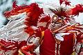 2017 Prairie Island Indian Community Wacipi (Pow Wow) (35672955002).jpg