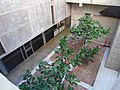 2019 Salk Institute south building looking down to lower level.jpg