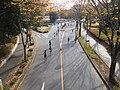37th Tsukuba Marathon.jpg